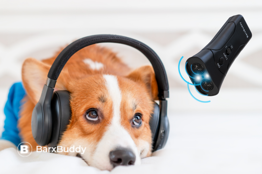 BARXBUDDY RECOMMENDS THESE AMAZING PODCAST FOR ALL DOG OWNERS